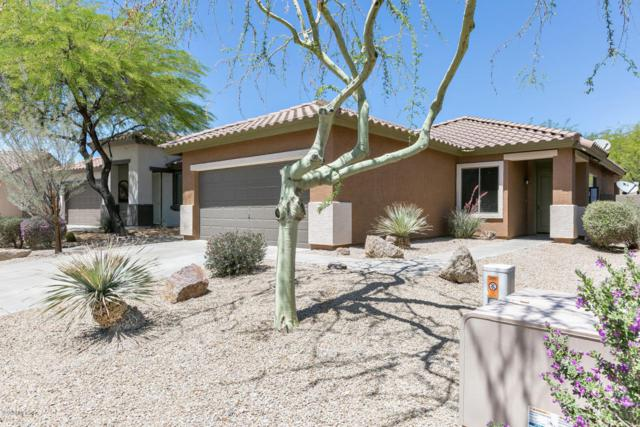 2526 W Whitman Drive, Anthem, AZ 85086 (MLS #5765747) :: The Everest Team at My Home Group