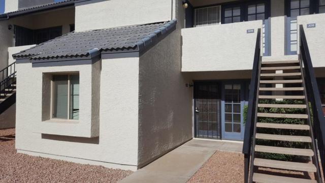 3716 E University Drive #1019, Mesa, AZ 85205 (MLS #5765886) :: Yost Realty Group at RE/MAX Casa Grande