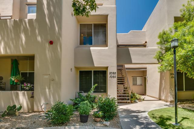 11333 N 92ND Street #2065, Scottsdale, AZ 85260 (MLS #5765913) :: Keller Williams Legacy One Realty