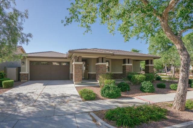 21038 W Wycliff Drive, Buckeye, AZ 85396 (MLS #5765953) :: Phoenix Property Group