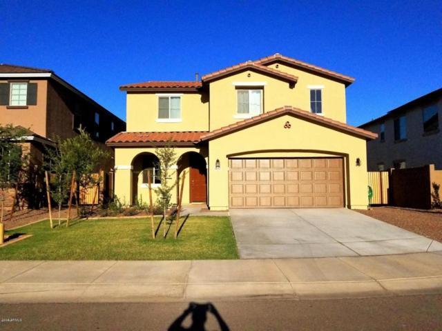 1657 N 212TH Drive, Buckeye, AZ 85396 (MLS #5765967) :: Occasio Realty