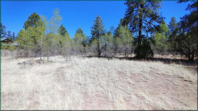 1880 Greenvalley Road, Overgaard, AZ 85933 (MLS #5766011) :: The Daniel Montez Real Estate Group