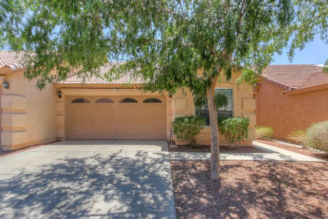6610 E University Drive #76, Mesa, AZ 85205 (MLS #5766121) :: Essential Properties, Inc.