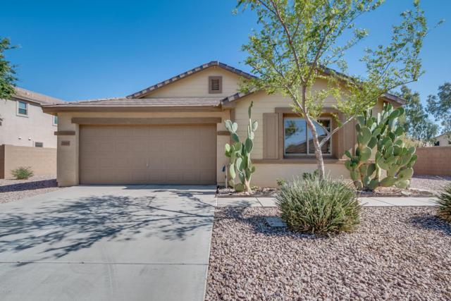 2255 W Quick Draw Way, Queen Creek, AZ 85142 (MLS #5766150) :: Yost Realty Group at RE/MAX Casa Grande
