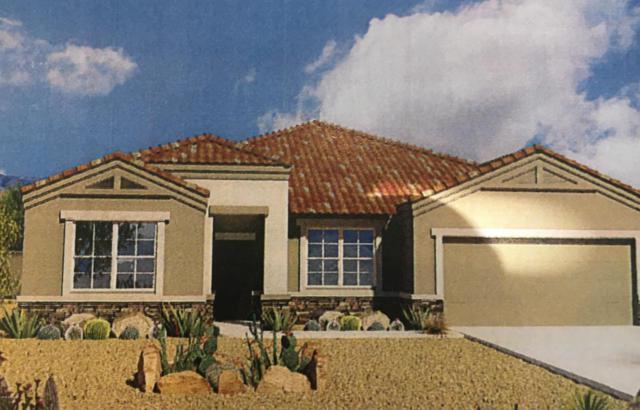 13833 W Desert Moon Way, Peoria, AZ 85383 (MLS #5766151) :: My Home Group