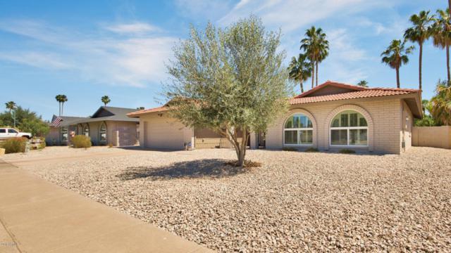 8531 E Via De Los Libros, Scottsdale, AZ 85258 (MLS #5766183) :: Essential Properties, Inc.