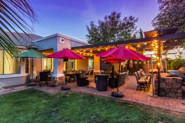 13808 W Montebello Avenue, Litchfield Park, AZ 85340 (MLS #5766207) :: Yost Realty Group at RE/MAX Casa Grande