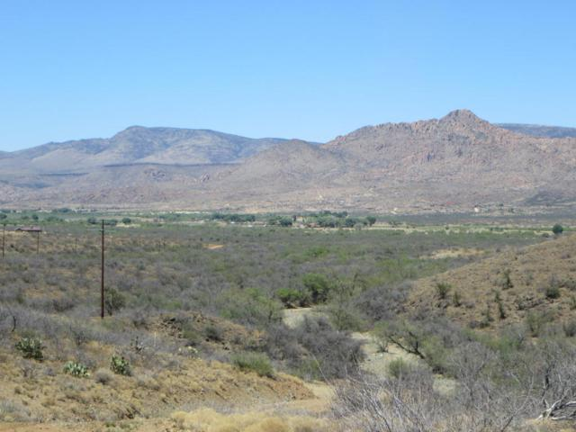 0-0 Puma Path, Peeples Valley, AZ 86332 (MLS #5766225) :: The Garcia Group @ My Home Group