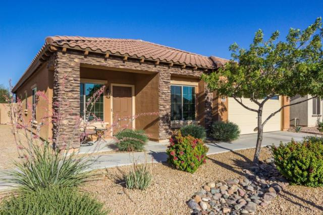 4893 S 243RD Drive, Buckeye, AZ 85326 (MLS #5766284) :: My Home Group