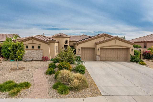18311 W Montebello Avenue, Litchfield Park, AZ 85340 (MLS #5766345) :: The Everest Team at My Home Group