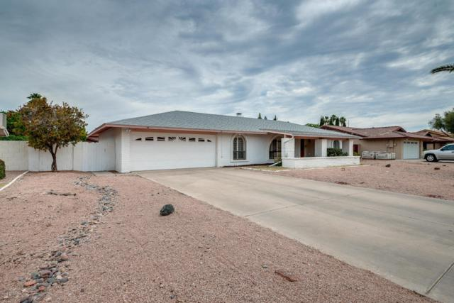 340 E Carol Ann Way, Phoenix, AZ 85022 (MLS #5766352) :: Cambridge Properties