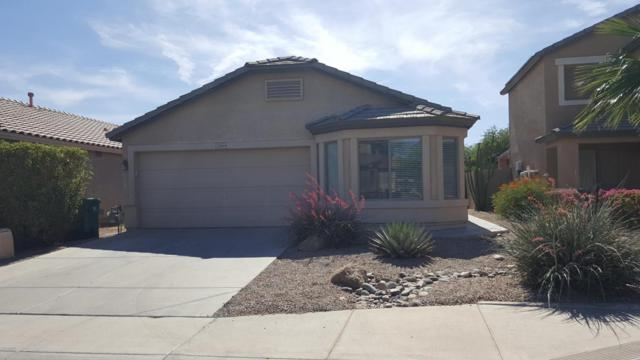 22644 N Kennedy Drive, Maricopa, AZ 85138 (MLS #5766454) :: Yost Realty Group at RE/MAX Casa Grande
