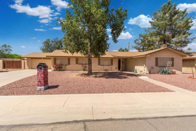 1174 E Bonita Place, Casa Grande, AZ 85122 (MLS #5766501) :: Yost Realty Group at RE/MAX Casa Grande