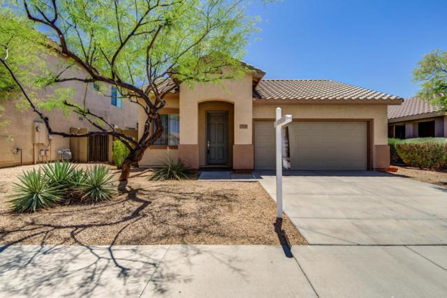 2719 W Bisbee Way, Anthem, AZ 85086 (MLS #5766536) :: Riddle Realty