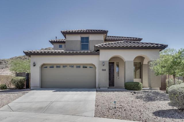 30081 N 70TH Drive, Peoria, AZ 85383 (MLS #5766545) :: The Laughton Team