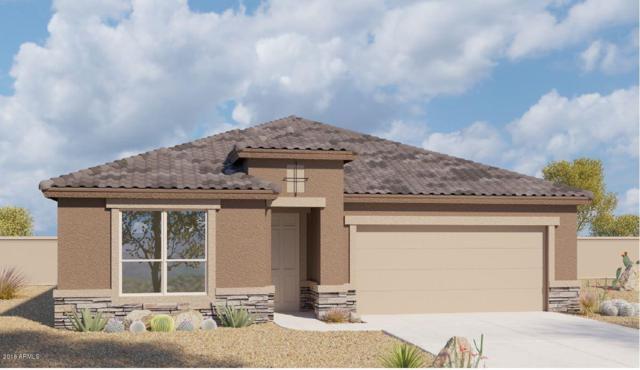 13827 W Desert Moon Way, Peoria, AZ 85383 (MLS #5766556) :: My Home Group