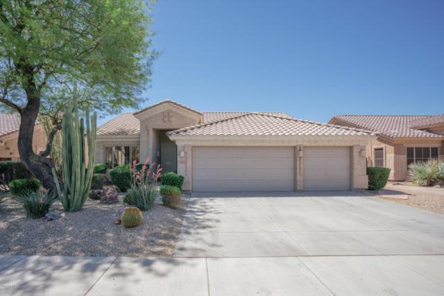 6105 W Sequoia Drive, Glendale, AZ 85308 (MLS #5766561) :: The Laughton Team