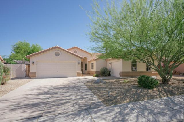 6546 W Tonopah Drive, Glendale, AZ 85308 (MLS #5766565) :: The Laughton Team