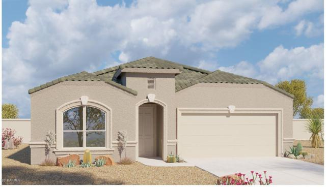 25924 N 138TH Lane, Peoria, AZ 85383 (MLS #5766579) :: My Home Group