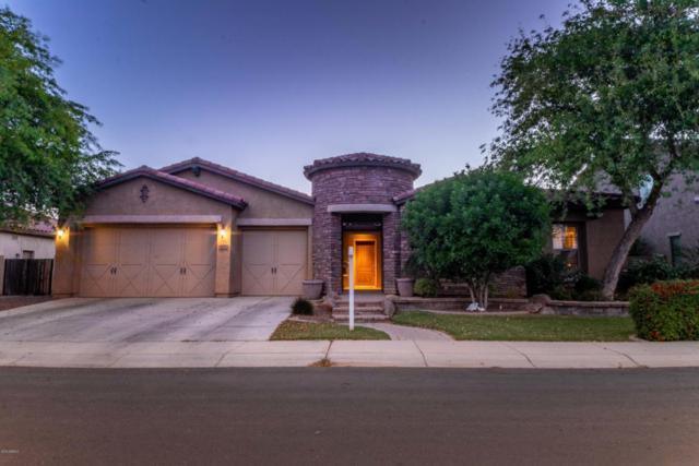 4170 S Pinnacle Place, Chandler, AZ 85249 (MLS #5766612) :: Kepple Real Estate Group