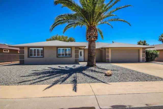 9509 W Cedar Hill Circle N, Sun City, AZ 85351 (MLS #5766704) :: Lifestyle Partners Team