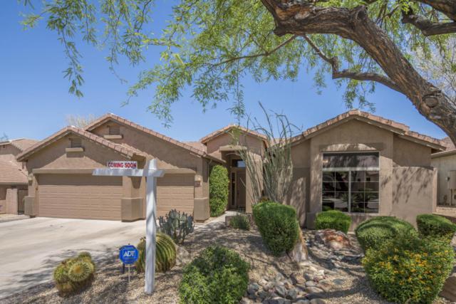 7446 E Glenn Moore Road, Scottsdale, AZ 85255 (MLS #5766720) :: Essential Properties, Inc.