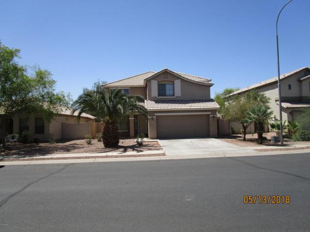 10629 W Roanoke Avenue, Avondale, AZ 85392 (MLS #5766829) :: The Everest Team at My Home Group