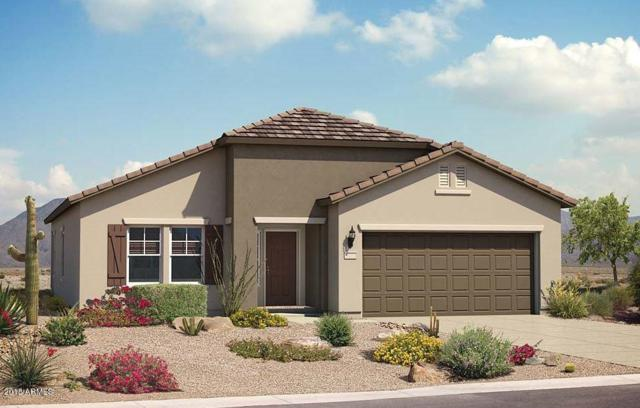 2467 N Hidden Canyon Drive, Florence, AZ 85132 (MLS #5766858) :: My Home Group