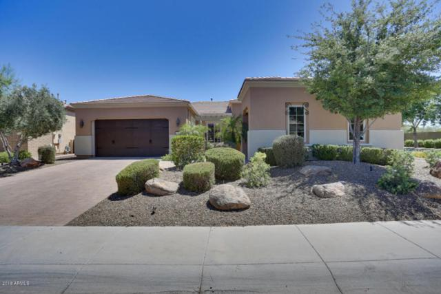 12941 W Caleb Road, Peoria, AZ 85383 (MLS #5766865) :: Yost Realty Group at RE/MAX Casa Grande