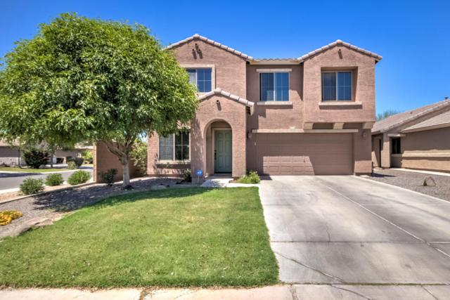1462 W Belmont Red Trail, San Tan Valley, AZ 85143 (MLS #5766939) :: Yost Realty Group at RE/MAX Casa Grande