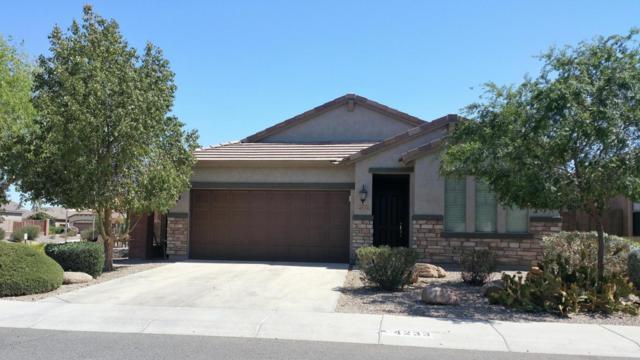 4233 E Alamo Street, San Tan Valley, AZ 85140 (MLS #5766956) :: My Home Group