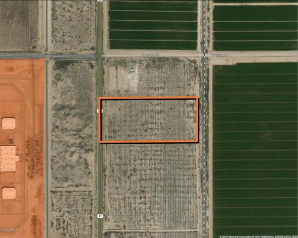0 S 87 Highway, Eloy, AZ 85131 (MLS #5766977) :: Yost Realty Group at RE/MAX Casa Grande