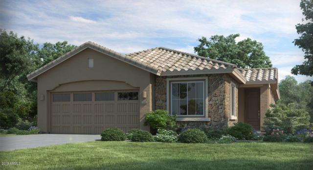25111 N 54TH Avenue, Phoenix, AZ 85083 (MLS #5767007) :: The Laughton Team