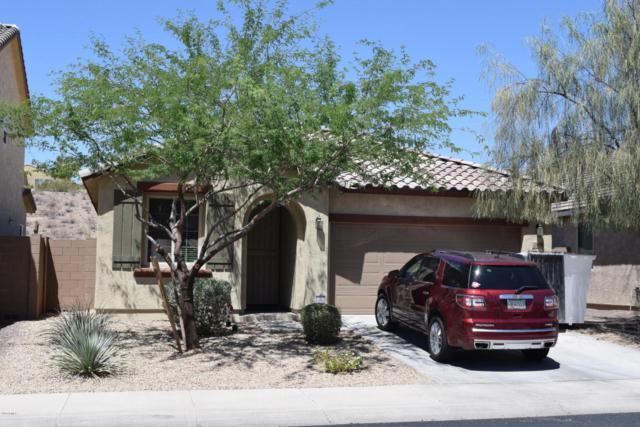 21820 N 119TH Drive, Sun City, AZ 85373 (MLS #5767040) :: The Jesse Herfel Real Estate Group