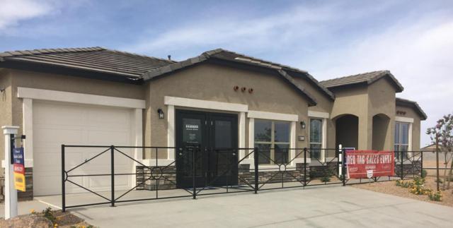 13842 W Remuda Drive, Peoria, AZ 85383 (MLS #5767100) :: My Home Group