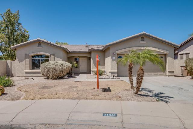 21104 E Roundup Way, Queen Creek, AZ 85142 (MLS #5767116) :: My Home Group