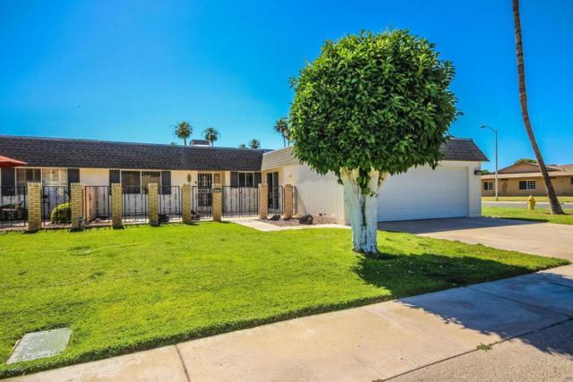 10523 W Roundelay Circle, Sun City, AZ 85351 (MLS #5767156) :: My Home Group