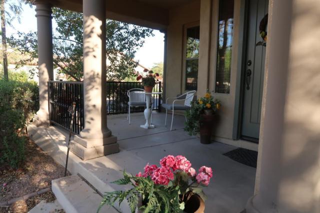 15407 W Windrose Drive, Surprise, AZ 85379 (MLS #5767211) :: Phoenix Property Group