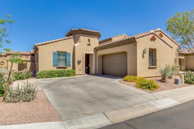 4700 S Fulton Ranch Boulevard #90, Chandler, AZ 85248 (MLS #5767219) :: Essential Properties, Inc.