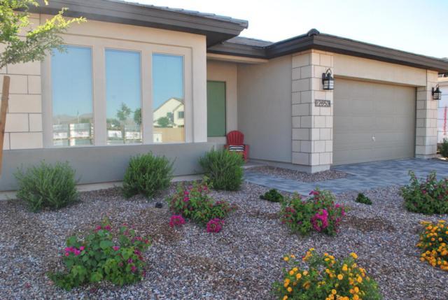12653 N 143RD Lane, Surprise, AZ 85379 (MLS #5767295) :: Phoenix Property Group
