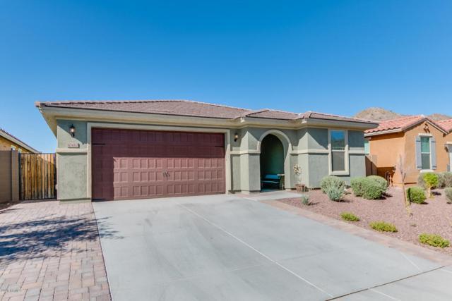 10410 W Alyssa Lane, Peoria, AZ 85383 (MLS #5767325) :: Kortright Group - West USA Realty