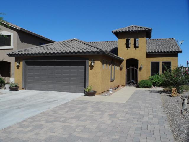 4272 S Celebration Drive, Gold Canyon, AZ 85118 (MLS #5767326) :: The Bill and Cindy Flowers Team
