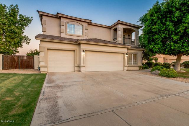 1125 N Date Palm Drive, Gilbert, AZ 85234 (MLS #5767357) :: The Everest Team at My Home Group
