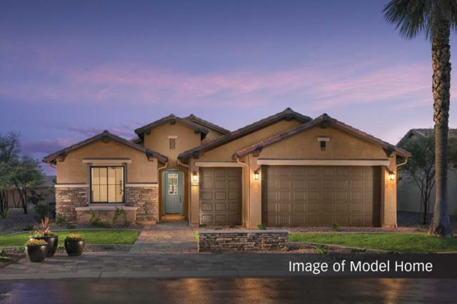 4393 W Box Canyon Drive, Eloy, AZ 85131 (MLS #5767375) :: Yost Realty Group at RE/MAX Casa Grande
