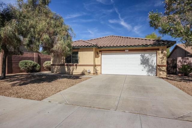 2351 S 155TH Lane, Goodyear, AZ 85338 (MLS #5767451) :: My Home Group