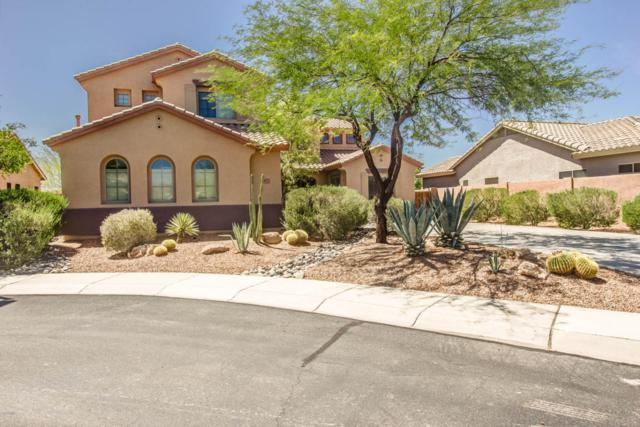 2407 W Webster Court, Anthem, AZ 85086 (MLS #5767471) :: Riddle Realty
