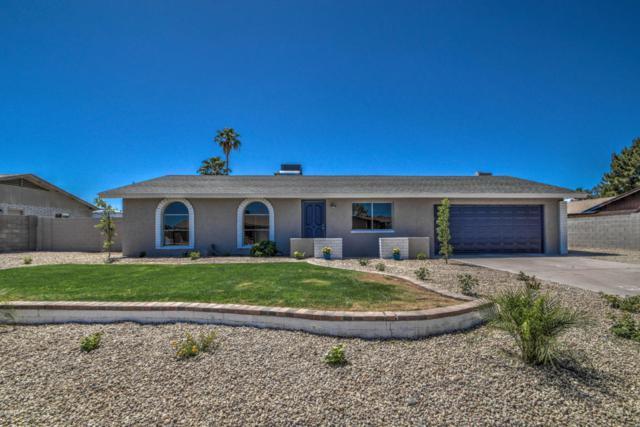 3021 E Des Moines Street, Mesa, AZ 85213 (MLS #5767480) :: Yost Realty Group at RE/MAX Casa Grande