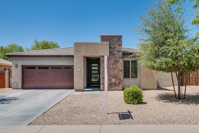 3498 E Ravenswood Drive, Gilbert, AZ 85298 (MLS #5767501) :: My Home Group