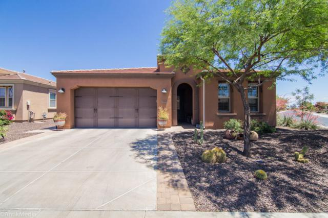 1588 E Sweet Citrus Drive, San Tan Valley, AZ 85140 (MLS #5767561) :: Yost Realty Group at RE/MAX Casa Grande