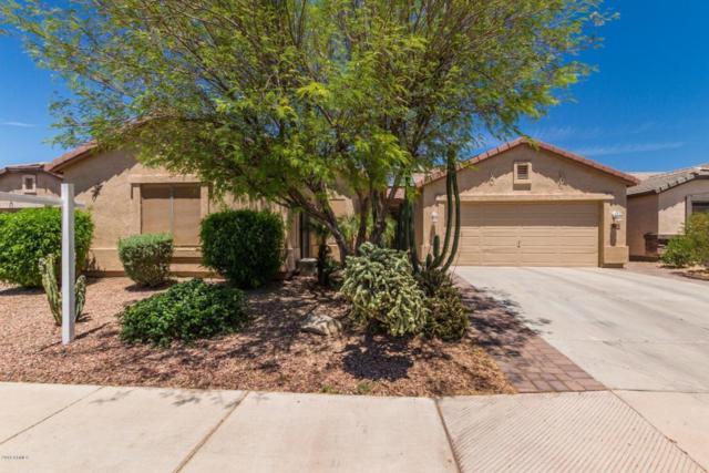 43524 W Mccord Drive, Maricopa, AZ 85138 (MLS #5767578) :: The Garcia Group @ My Home Group